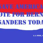 save america voter for bernie sanders