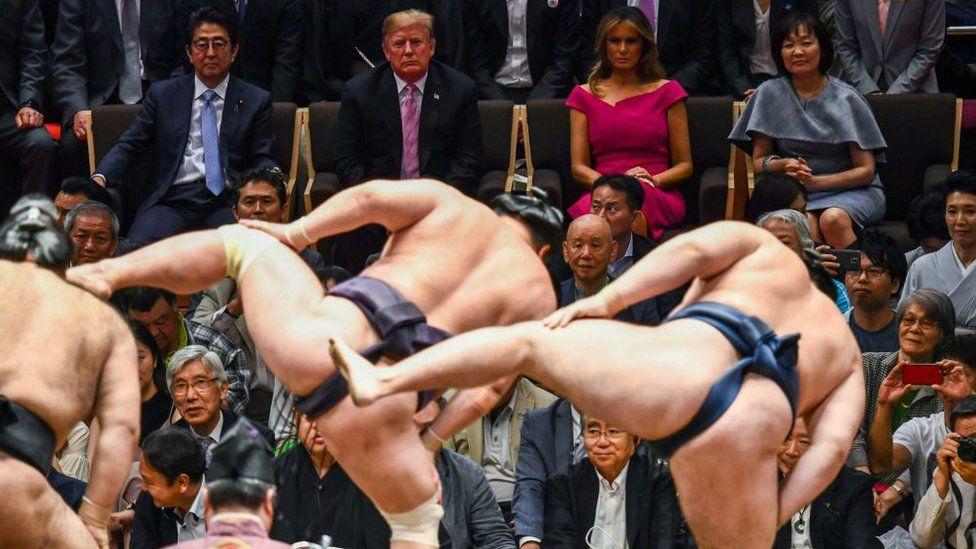 trump at sumo wrestling match 2019