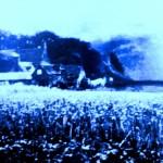 blue enhanced farm