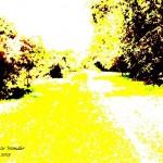 Pathway to Wonder,2013 signed