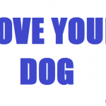 love your dog, 2014