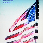 American Flag signed