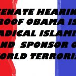 OBAMA IS A TERRORIST PROOF