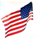 flag waving free 2002 series 2