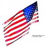 FREE WAVING FLAG 4